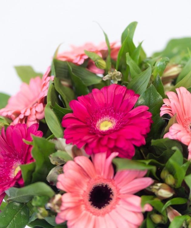 Fleurs à Lisbonne - Ramo de Gerberas Cor de Rosa 5