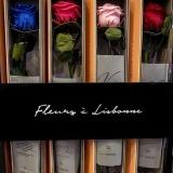 Fleurs à Lisbonne - Rosas Preservadas 1 Thumb