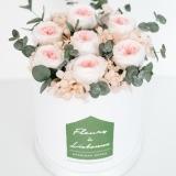 Fleurs à Lisbonne - Caixa de Rosas Preservadas Cor de Rosa 2 Thumb